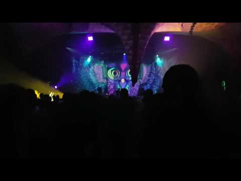 Drip Drop-Mighty drop(Live)