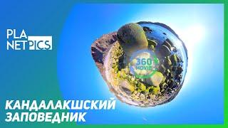 VR 360 | Кандалакшский государственный природный заповедник