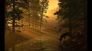 Fleet Foxes -Helplessness Blues ( Full Album)