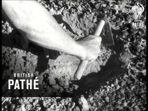 Oil Search In Libya (1957)