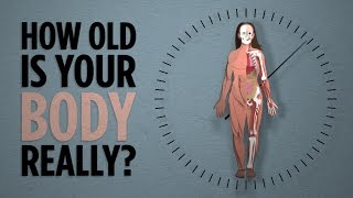 How Old Is Your Body, Really? by : Skunk Bear: Science From NPR