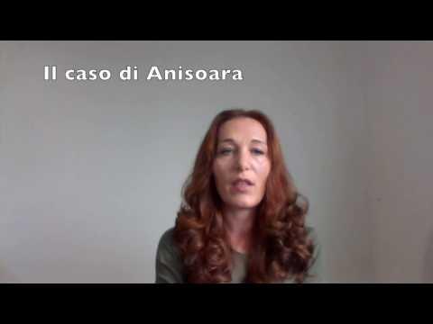 Sollecitare la cittadinanza e ottenerla in 3 mesi Il caso di Anisoara