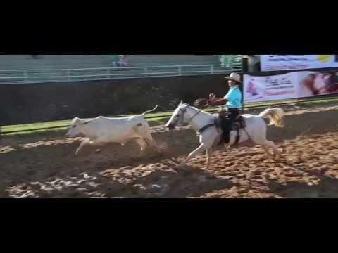 Festival Llanero de Villavicencio 2014