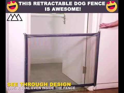 Retractable Dog Fence 1