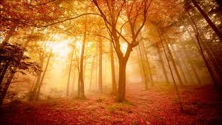 Beautiful Instrumental Hymns about Prayer and God's Help for your Troubles | Relaxing, Peaceful