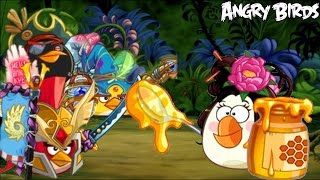 Angry Birds Epic - POISON TEAM ATTACK (Arena Battle)