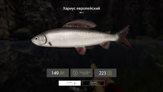 Русская рыбалка 4 Бюджетная сборка спиннинга для новичка на р. Белая