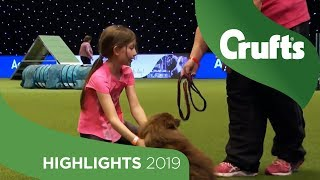 Young Dog Trainer Katherine Persists With Reluctant Crowd Favourite Timmy | Crufts 2019