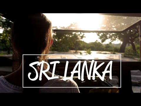 We saw a leopard! Safari Time in Sri Lanka || Sri Lanka Travel Guide