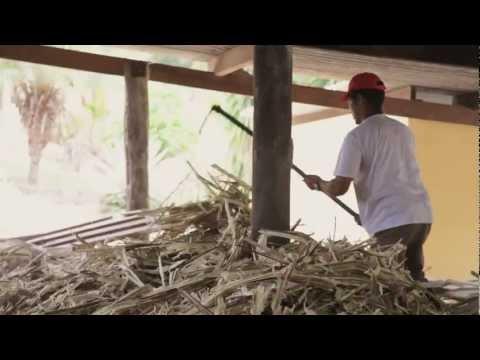 Conheça o processo de produção da Cachaça Pendão, de Minas Gerais