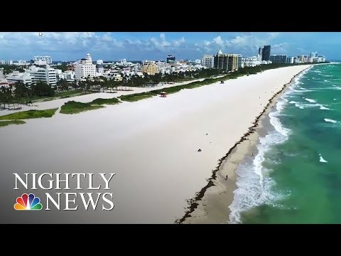 Hurricane Irma: South Florida Residents Race Against Time To Prepare For Storm | NBC Nightly News
