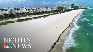 Hurricane Irma: South Florida Residents Race Against Time To Prepare For Storm   NBC Nightly News