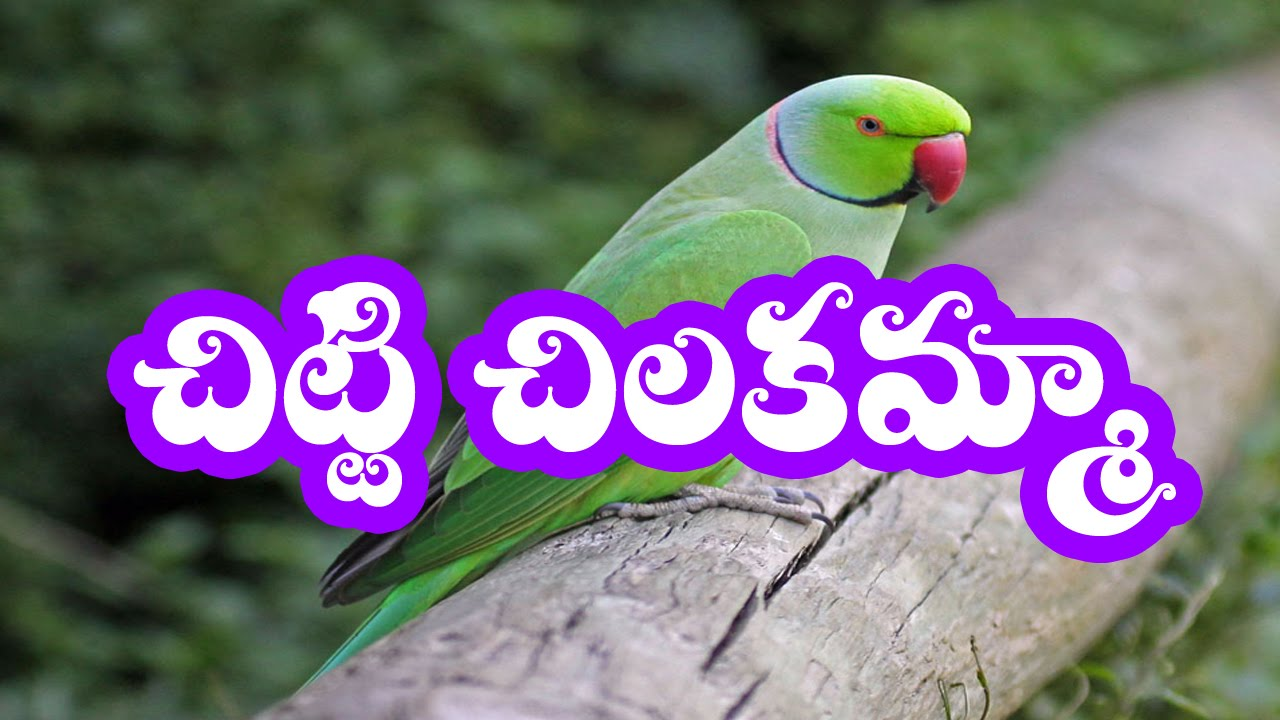 1st class all telugu rhymes తెలుగు అభినయ గేయాలు.