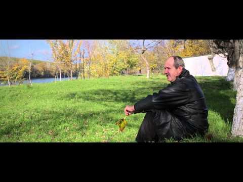 Alexandru Pelin - Sat frumos ca al meu sat