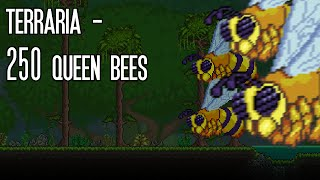 Terraria - Killing 250 Queen Bees at once