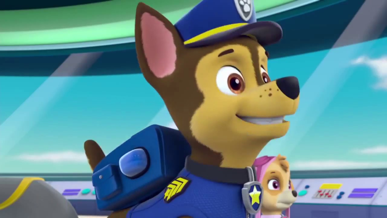 paw patrol meet chase  youtube