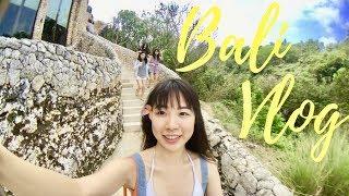 BALI VLOG I 陽光沙灘比基尼☀️I 峇里島特輯 I 2017