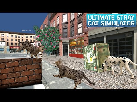Ultimate Stray Cat Simulator