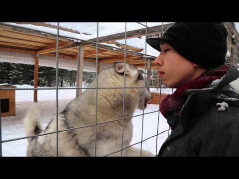 Следователи проверяют смертельно опасную ледяную горку в Свердловской области