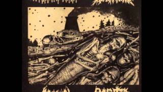 KERENANEKO  from split cd w/Agathocles/Prosuck/Rvota