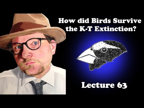 Lecture 63 How did Birds Survive the K-T Extinction?