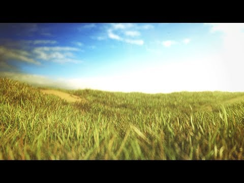 Cinema4D Tutorial - Octane & Forester Advanced Grass Shading