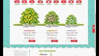 Mysoccer.money игра с выводом реальных денег 2018 без баллов
