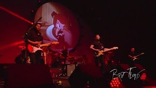 "Brit Floyd - ""Sheep"" - Space & Time - Live in Amsterdam"