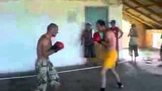 Бои Дагестанских боксеров.3gp