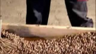 видео Укладка мягкой кровли своими руками: преимущества кровли, требования, пошаговая инструкция с фото