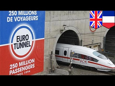 Migrant crisis: teenager trying to enter UK from France found dead on Eurotunnel train - TomoNews