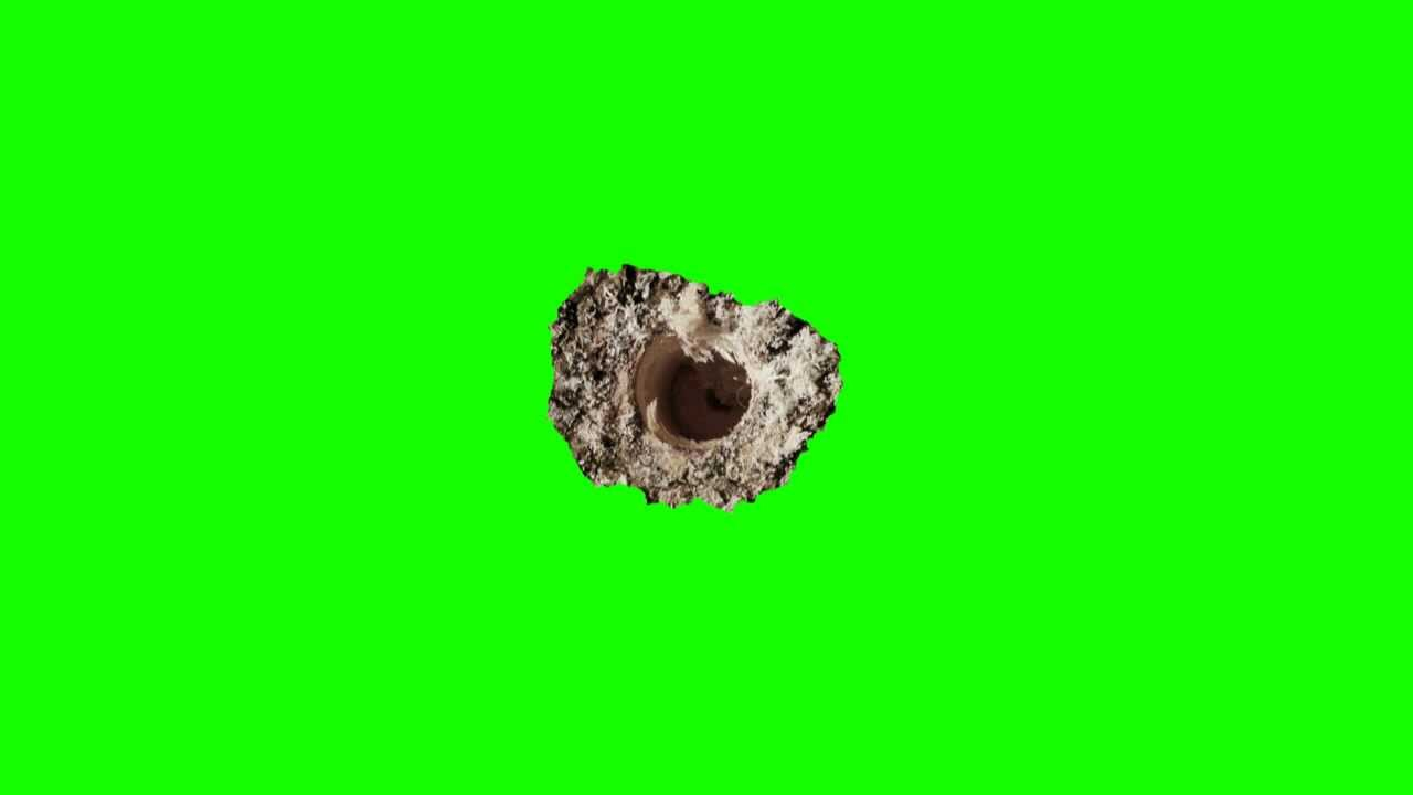 25 mm bullet hole on tree in green screen free stock footage