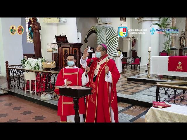 Informativo Arquidiocesano - Domingo de Ramos 2021