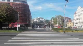 Rosomaki w Poznaniu