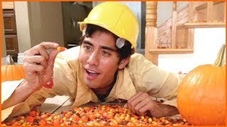 Zach King  Halloween Magic Vines Collection - Best Magic Tricks Ever