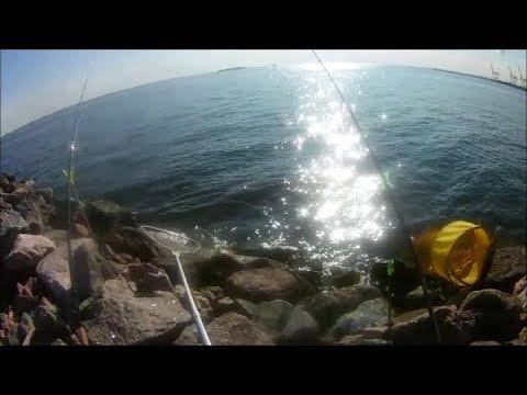 Рыбалка на финском заливе. Ловим на фидер.