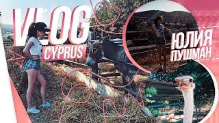 CYPRUS VLOG || Ферма Святого Георгия ( Ослы, Страус, Лошади, Свиньи )