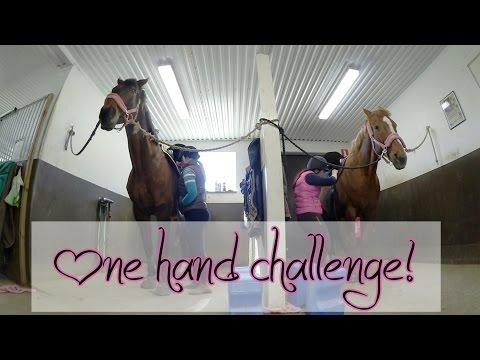 Challenge - Vem kan göra iordning hästen snabbast med EN hand?
