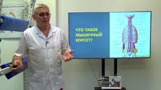 Как происходит питание межпозвоночного диска