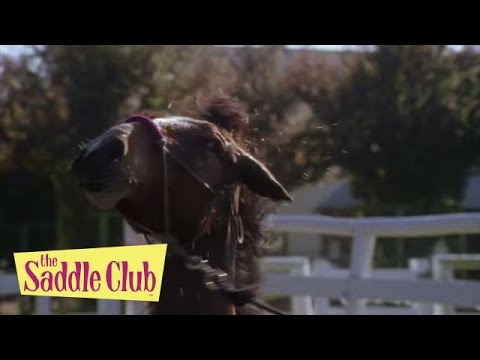 The Saddle Club - Set Up | Season 01 Episode 13 | HD | Full Episode