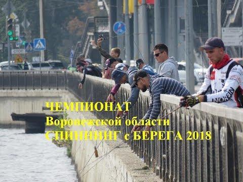 Чемпионат Воронежской области спиннинг с берега 2018