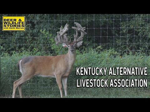 Kentucky Alternative Livestock Association | Deer & Wildlife Stories