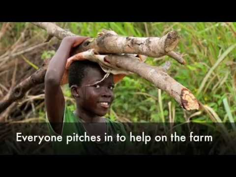 Savior Children Foundation Orphanage and School, Ghana - Farm Project