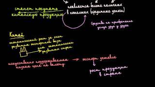Долговой круг: причины и последствия(, 2014-12-05T12:44:58.000Z)