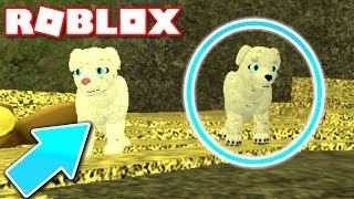 WOLVES LIFE 3 ROBLOX *NEW*