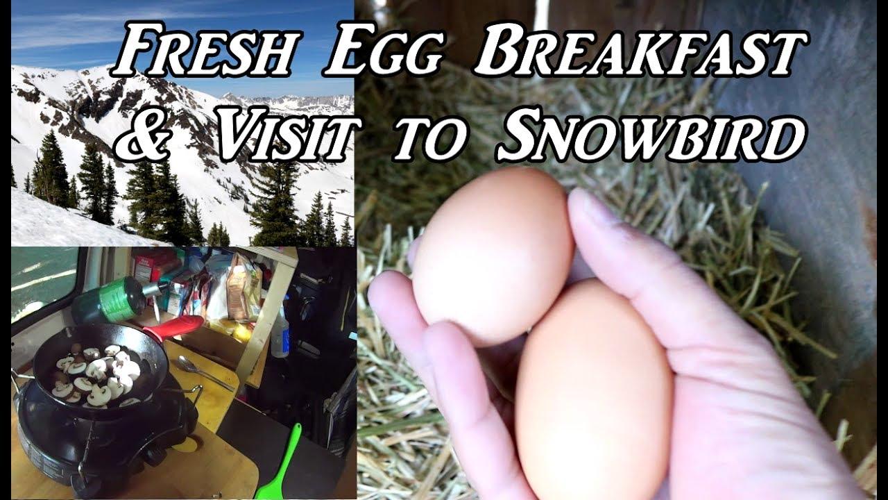 fresh-egg-breakfast-visit-to-snowbird-vanlife-on-the-road