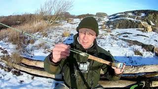 Sjøørretfiske fra Vestfold til Telemark