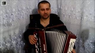 ФРИСТАЙЛ   БЕЛАЯ БЕРЁЗА Игра на баяне
