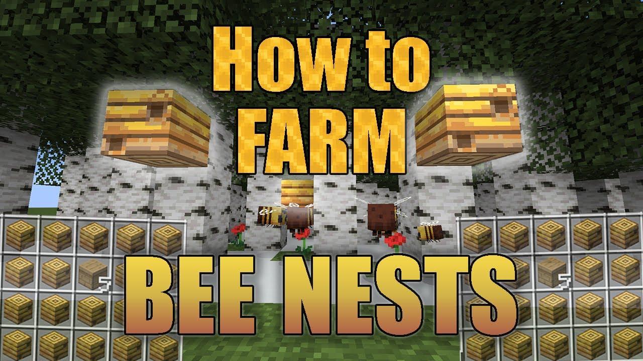 Tutorials/Honey farming – Official Minecraft Wiki