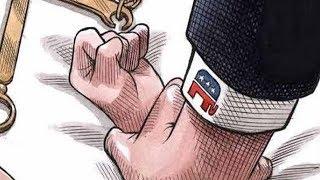 The inspiration behind viral Brett Kavanaugh Cartoon    The Investigators with Diana Swain
